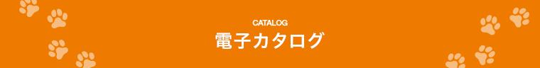 電子カタログ